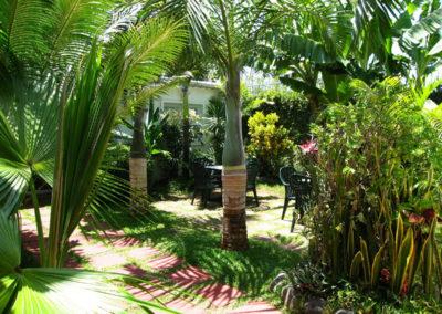 Autre vue du jardin exotique