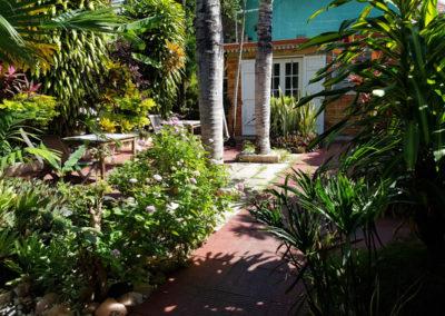 Un magnifique jardin exotique ensoleillé
