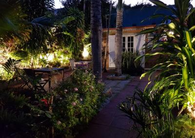 Jardin tropical au crépuscule