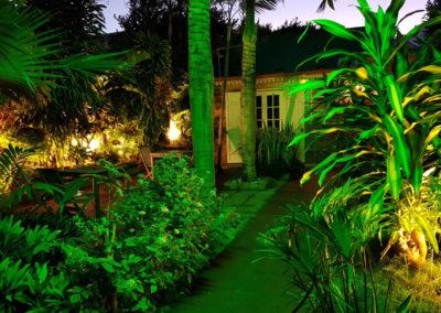 Jardin tropical la nuit